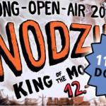 Dong 2013 Vorverkauf beginnt