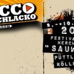 Rocco Del Schlacko 2013 mit Dendemann,Chuck Ragan und Laing